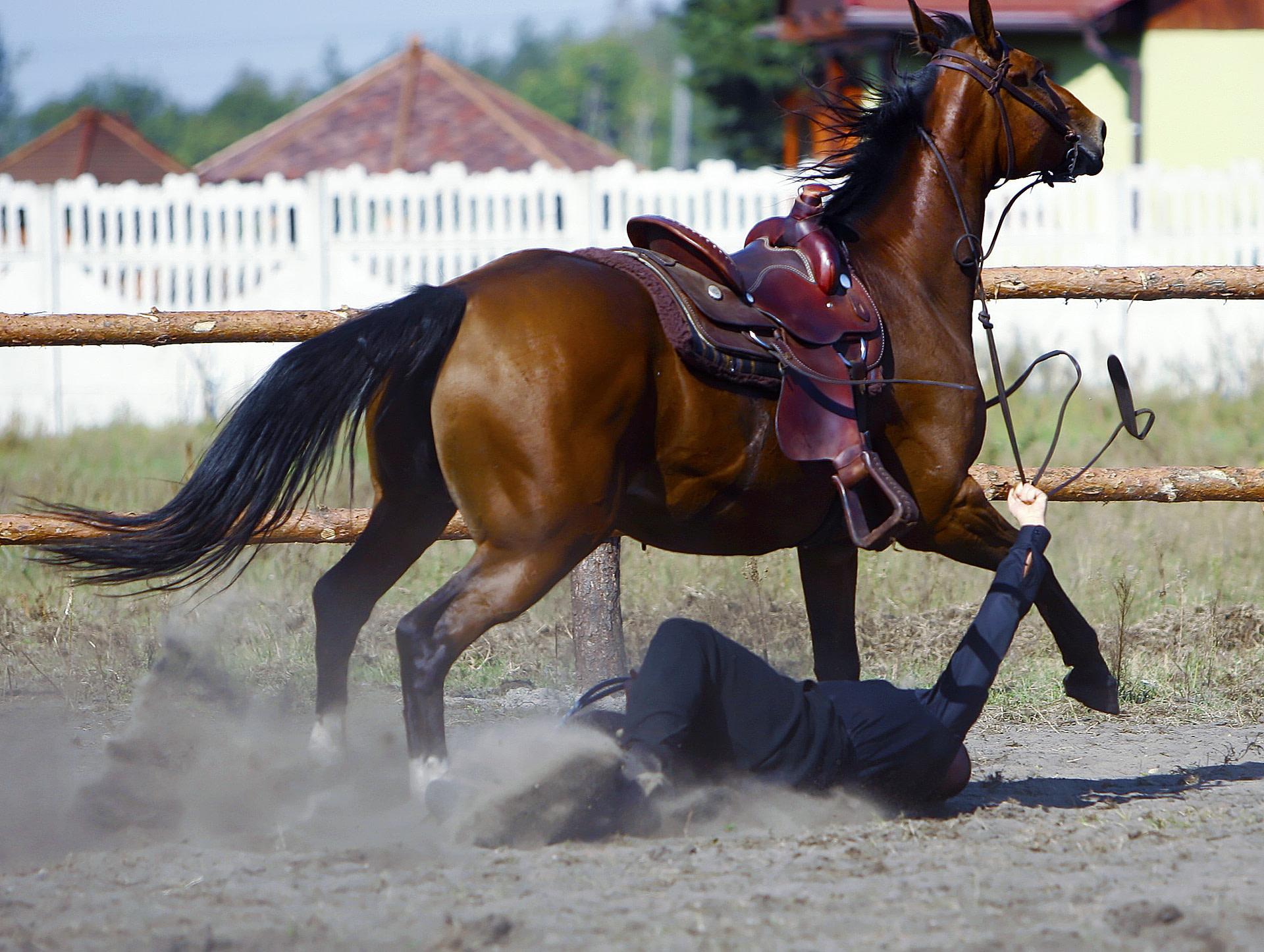 Sturz vom Pferd - Reitunfälle können durch eine gute