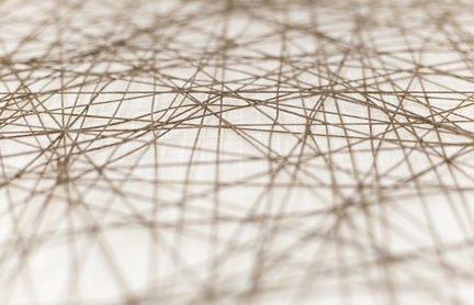 Faszien Netz für Informationen -
