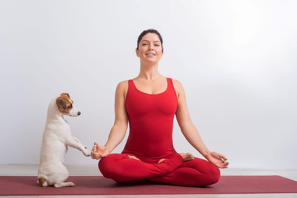 Yogapose - Beine in klassischem Lotussitz - Freiheit in Bein und Becken